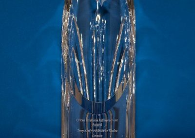laa-hand-cut-crystal-award-2011